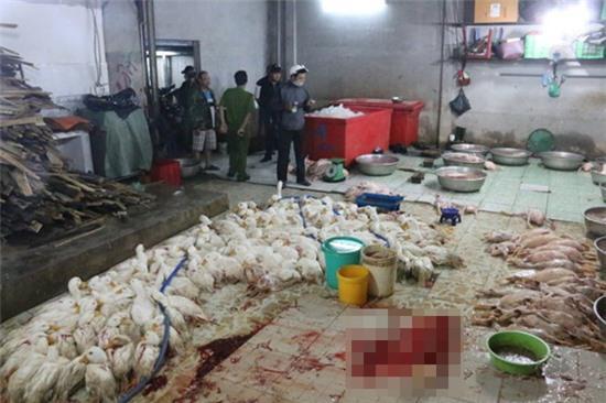 Những vụ thực phẩm bẩn đầu năm 2015 khiến người dân sởn da gà