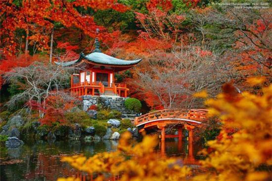 nhung noi co mua thu dep nhat the gioi 3 Những nơi có mùa thu đẹp nhất thế giới