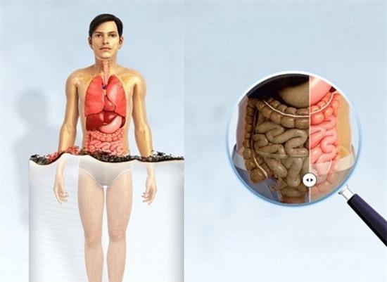 hut thuoc la anh huong den co the nhu the nao 3 Hút thuốc lá ảnh hưởng đến cơ thể như thế nào?