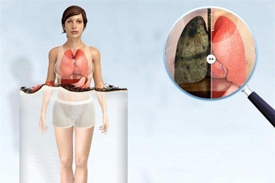 hut thuoc la anh huong den co the nhu the nao 8 Hút thuốc lá ảnh hưởng đến cơ thể như thế nào?