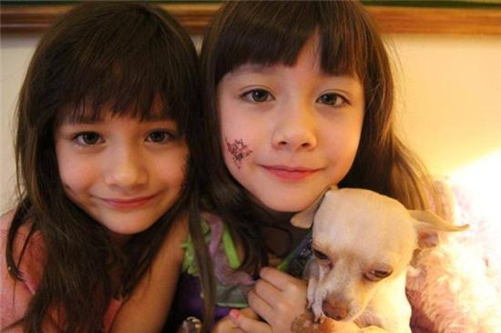 Hai chị em sinh đôi Mỹ lai Hàn nổi tiếng một thời giờ ra sao? - Ảnh 7.