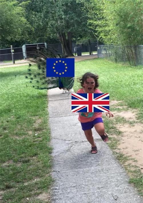 Khoảnh khắc này nhanh chóng được liên tưởng với việc nước Anh rời khỏi EU.