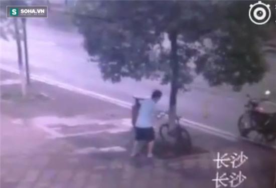 Màn trộm cắp xe đạp bá đạo, chúng ta cần xem để cảnh giác - Ảnh 2.