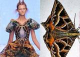 Top 10 thiết kế khơi nguồn xu hướng thời trang Xuân/Hè 2010
