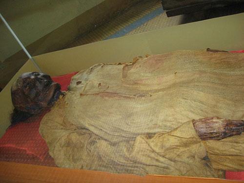 xu2 Bí mật xác ướp tại Bảo tàng lịch sử Việt Nam