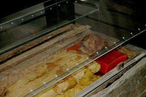 xu3 Bí mật xác ướp tại Bảo tàng lịch sử Việt Nam