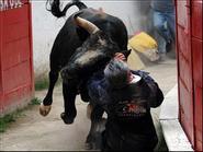Đấu sĩ tử nạn vì bị bò tót húc bên lề trường đấu