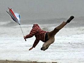 Những chiếc ô 'cuốn theo chiều gió'
