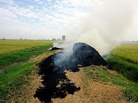 Người Hà Nội bị hun khói trong nắng nóng
