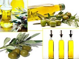 Dầu olive -thần dược cho vẻ đẹp cơ thể