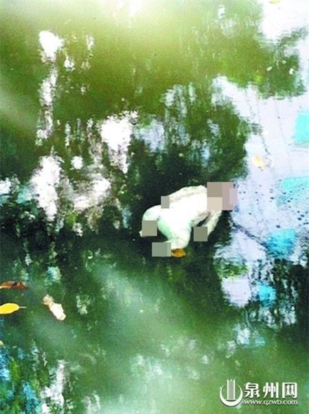 """Đau lòng xác trẻ """"sơ sinh"""" trôi trên sông bị nhầm là búp bê đồ chơi"""