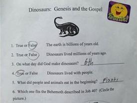 Bài kiểm tra điểm A+ gây tranh cãi
