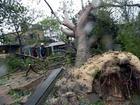 Hình ảnh bão số 10 tàn phá miền Trung