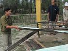 Công an 9X tử vong khi giúp dân trong bão lũ