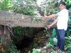 30 năm tìm kho báu vua Hàm Nghi, chết trong cô độc