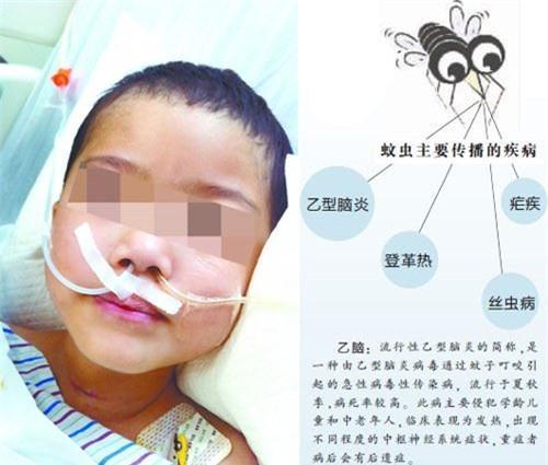 Bé 5 tuổi hôn mê suốt 3 tháng vì bị muỗi đốt                                             Bé 5 tuổi hôn mê suốt 3 tháng vì bị muỗi đốt
