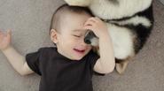 Tan chảy với hình ảnh đáng yêu của cậu bé gốc Nhật Bản bên cún cưng
