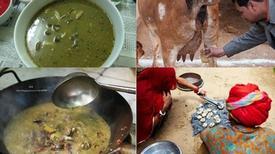 Những món ăn, thức uống làm từ phân, nước tiểu bò khiến người dùng mê tít