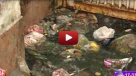 12 hộ dân sống chung với nước cống giữa thủ đô Hà Nội