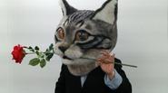 Mặt nạ mèo khổng lồ, trò chơi mới tại Nhật Bản