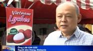 Vải thiều Việt Nam chinh phục thị trường châu Âu với giá 240.000 đồng/kg