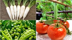 Dùng rau củ để làm da trắng đẹp lâu dài