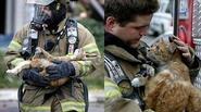 Những bức ảnh chạm đến trái tim về tình thương của con người dành cho động vật