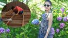 Facebook24h: Vợ hạnh phúc nhìn Lam Trường chăm lo cho tổ ấm