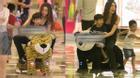 Hồ Ngọc Hà chơi đùa thoải mái cùng Subeo sau clip gây tranh cãi