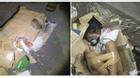 Câu chuyện phẫn nộ phía sau bức ảnh em bé bị trói và nhét vào thùng các-tông