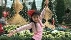 Con gái Trương Ngọc Ánh tận hưởng kỳ nghỉ mừng sinh nhật tuổi mới