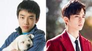 Yoo Seung Ho: Từ sao nhí đến diễn viên hạng A của Kbiz