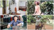 Cận cảnh nhà ở quê của Sơn Tùng MTP và Hòa Minzy