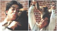 Thời thanh xuân gắn liền với khỉ của Lục Tiểu Linh Đồng