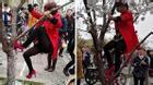 Du khách Trung Quốc thi nhau đạp rụng hoa đào để... tự sướng
