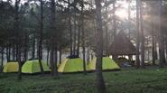 Bị khách sạn hét giá, khách du lịch Đà Lạt chọn tour cắm trại ngoài trời