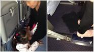 Hình ảnh bà cho cháu gái đi tiểu ngay trên máy bay gây bão mạng