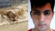 Chân dung nam thanh niên khỏa thân nhảy vào chuồng Sư tử để tự sát