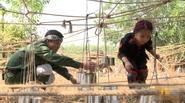 Bố ơi: Hồng Đăng và bé Nhím khéo léo vượt thử thách