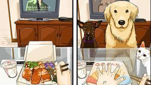 """Cuộc sống của bạn """"trước và sau"""" khi...nuôi chó"""