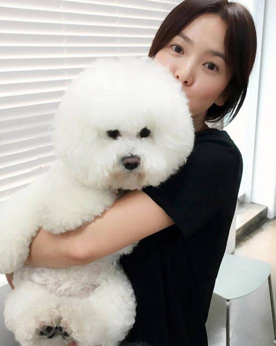 Để mặt mộc, mặc giản dị nhưng Song Hye Kyo vẫn xinh ơi là xinh