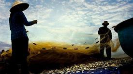 Làng chài bình yên ven biển Vũng Tàu