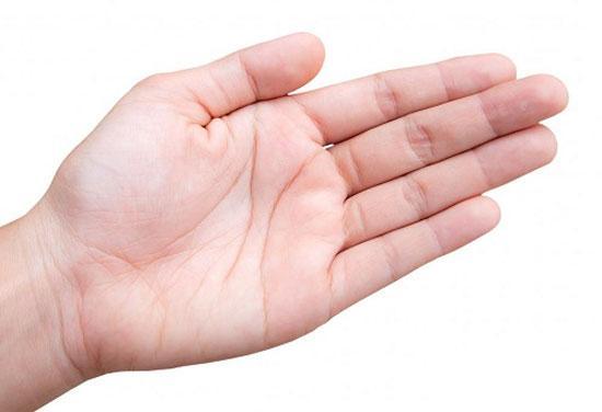 Bàn tay của chủ nhân có vận mệnh tài phú và sự nghiệp thành công - Ảnh 1.