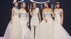 Nếu The Face thi lại, team Hà Hồ chắc chắn chiến thắng khi catwalk với váy cưới