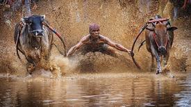 Thế giới kỳ vĩ qua ảnh dự thi của National Geographic