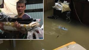 """Đàm Vĩnh Hưng """"nổi điên"""" vì sau một cơn mưa nhà đã biến thành sông, hàng hiệu trôi lềnh phềnh"""