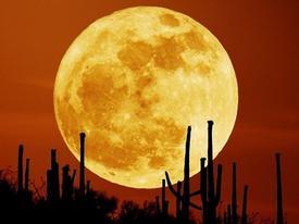 Những hình ảnh tuyệt đẹp của siêu trăng trên khắp thế giới