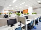 Cần chú ý gì khi đặt chậu cây xanh trong phòng làm việc?