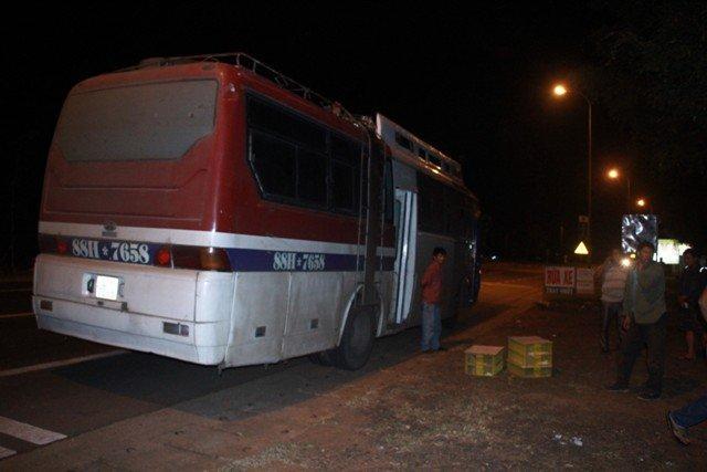 Xe khách cho 120 con rắn hổ mang nằm chung hành khách - Ảnh 2.