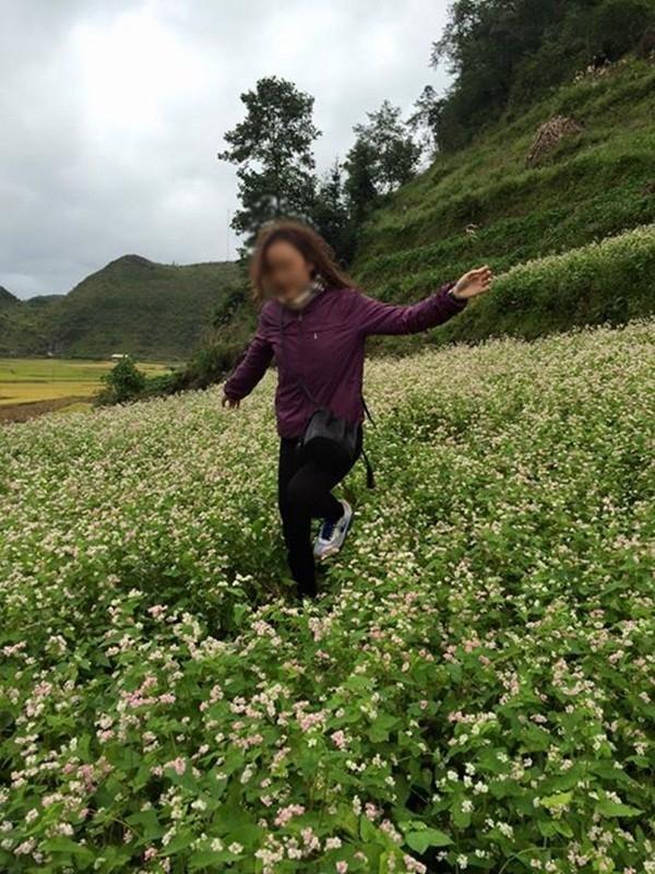 Hình ảnh cô gái xinh đẹp phi xe máy qua vườn hoa cải gây bức xúc - Ảnh 4.
